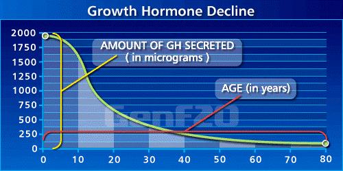 年齢による成長ホルモンの分泌