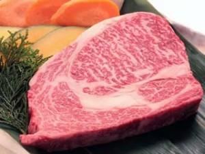高タンパク質の牛肉