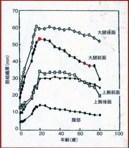 年齢と筋量のグラフ