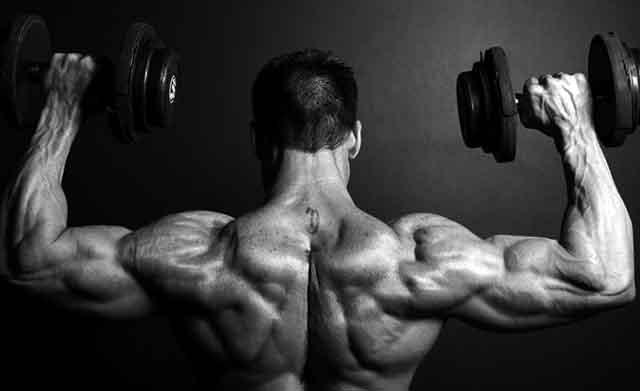 ボディビルダーの発達した肩の筋肉