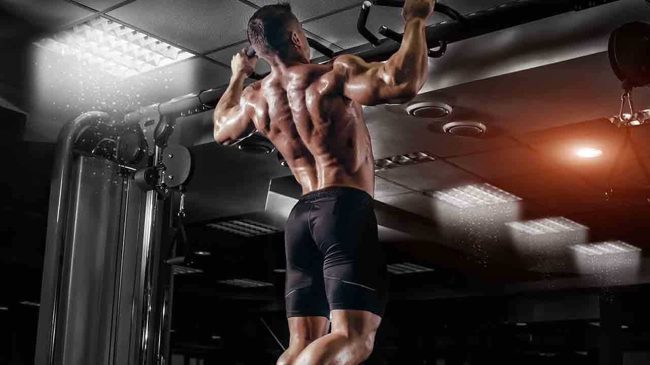 背中の筋量を最大に増やすチンニング