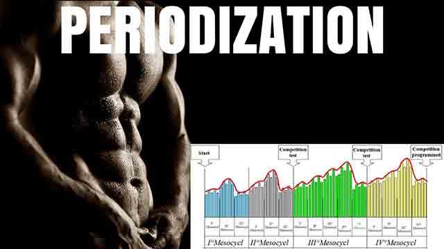 ピリオダイゼーションのグラフ