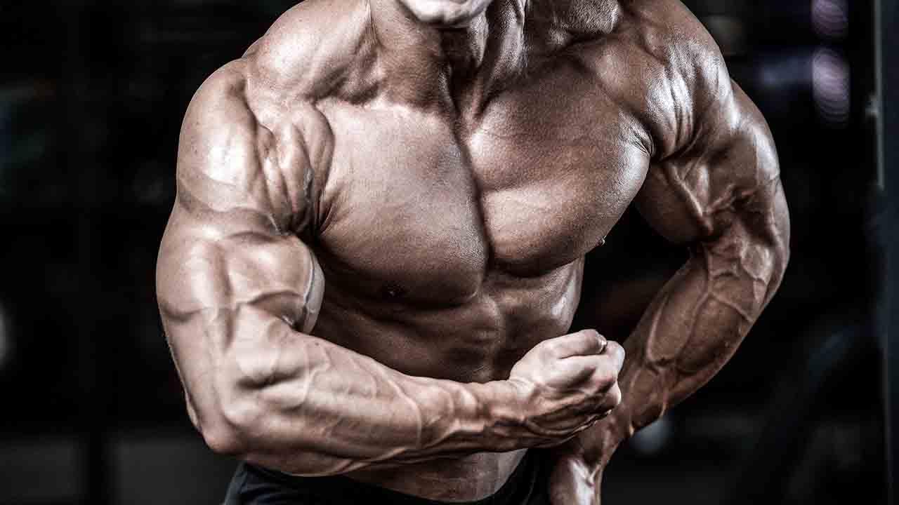 バルクアップした筋肉の体