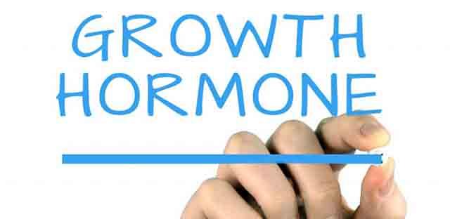 成長ホルモン