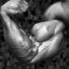 たくましい腕を作る為に押さえたい理論 POFのトレーニング