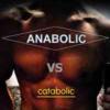 筋肥大のための同化(アナボリック)と異化(カタボリック)について学んでみよう